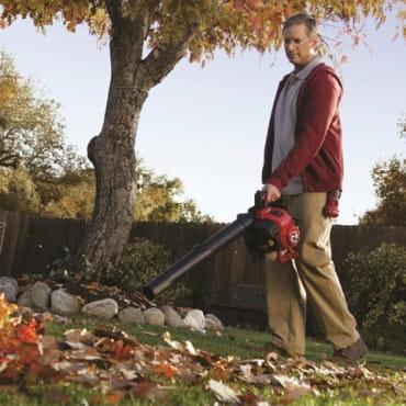 Ручные воздуходувки и садовые пылесосы